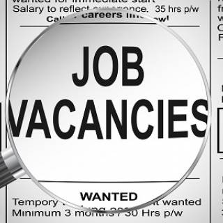 Job Offer Supply Chain project coördinator